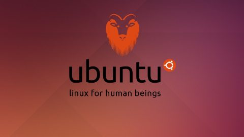 Fallo Ubuntu the system is running in low-graphics mode